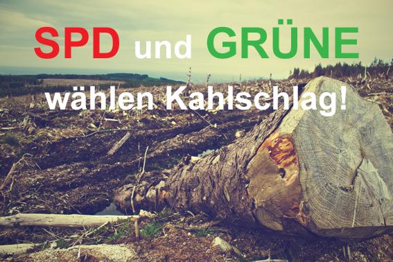 SPD und Grüne wählen Kahlschlag - der Planfeststellungsbeschluss ist da. 13.02.2020
